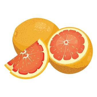 Мультфильм грейпфрута. свежий витаминный фрукт. сочные цитрусовые нарезать ломтиками.