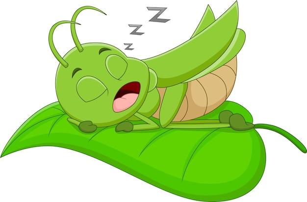 Мультфильм кузнечик спит на листе