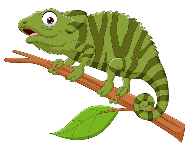 Cartoon green chameleon on tree branch