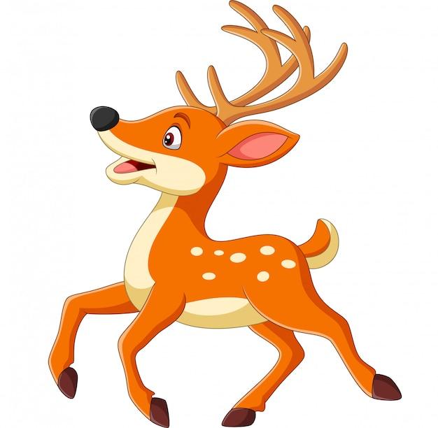 Cartoon happy baby deer running