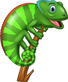 Мультфильм счастливый хамелеон