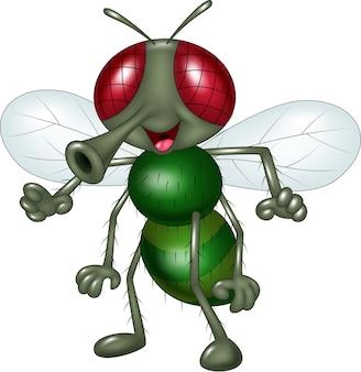 Cartoon happy fly isolated on white background