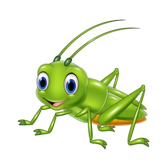 Cartoon happy grasshopper