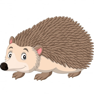 Cartoon happy hedgehog on white background