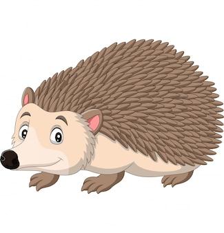 Cartoon happy hedgehog on white background