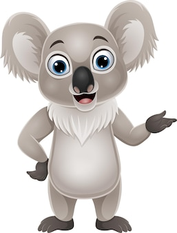 Cartoon happy koala presenting on white