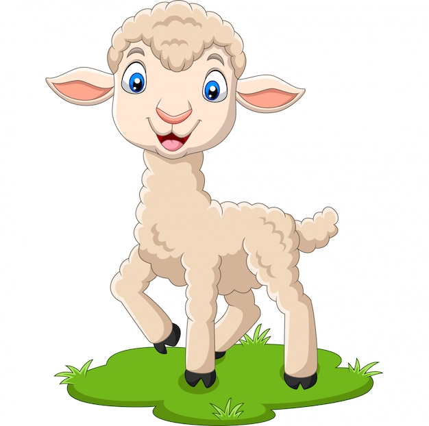 Cartoon happy lamb on the grass