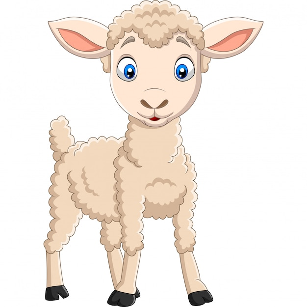 Cartoon happy lamb isolated on white