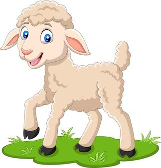 草の上の漫画の幸せな子羊