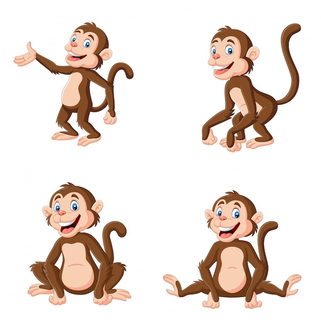 Cartoon happy monkey in different pose