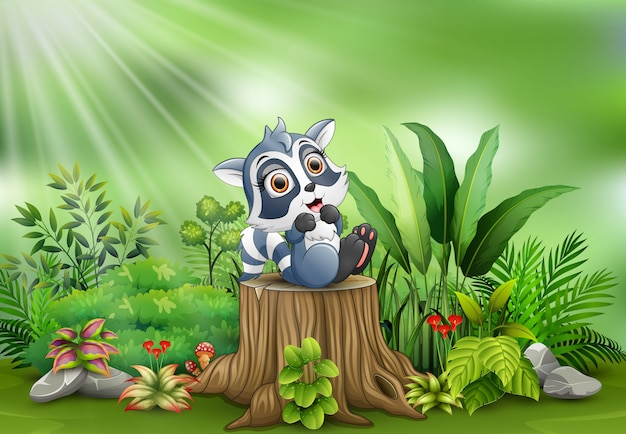 Cartoon happy raccoon on tree stump with green plants