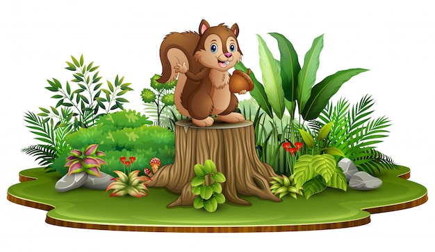 Cartoon happy squirrel holding pine cone and standing on tree stump with green plants