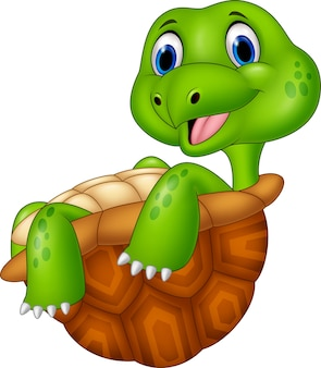 Cartoon happy turtle relaxing