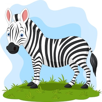 Cartoon happy zebra in the grass