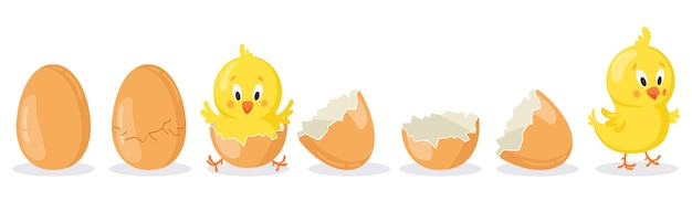 Cartoon hatched easter egg isolated on white