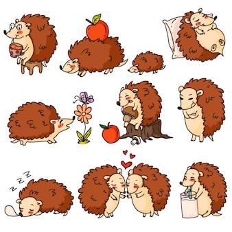 Cartoon hedgehog character set on white background