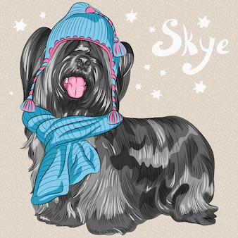 Cartoon hipster dog skye terrier breed smiling