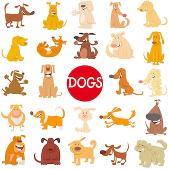 Cartoon illustration of dogs characters large set
