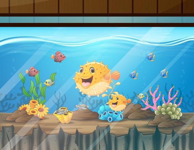Cartoon illustration of illustration of the fishes in aquarium
