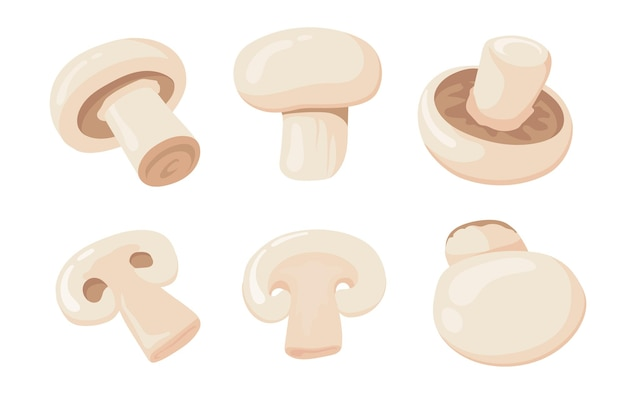 Cartoon illustration of mushrooms