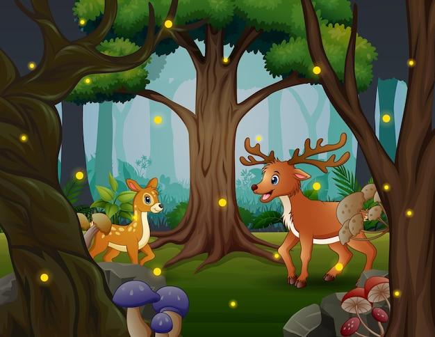 Карикатура иллюстрации оленей, живущих в джунглях