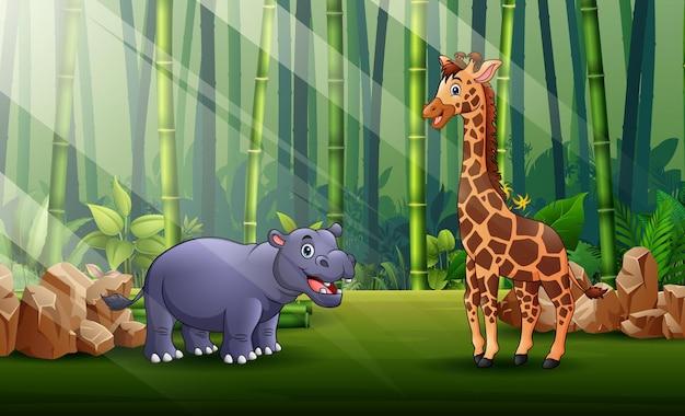 Карикатура иллюстрации бегемота и жирафа, живущего в лесу