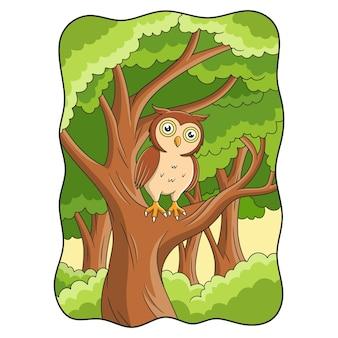 漫画のイラストフクロウは日中大きくて日陰の木の上にあります