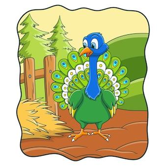 孔雀が尻尾を広げて農場にいる漫画イラスト