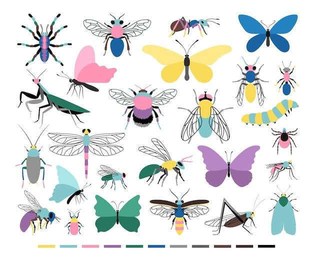 만화 곤충 세트입니다. 곤충학 과학의 귀여운 작은 생물, 흰색 배경에 고립 된 컬러 애벌레와 나비 아이콘의 벡터 일러스트 레이 션
