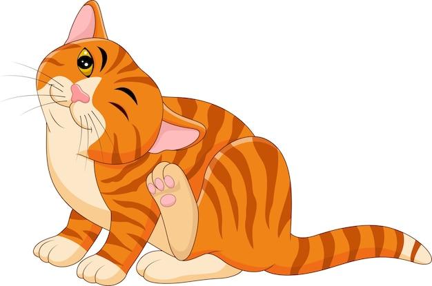 Мультяшный зуд кошки