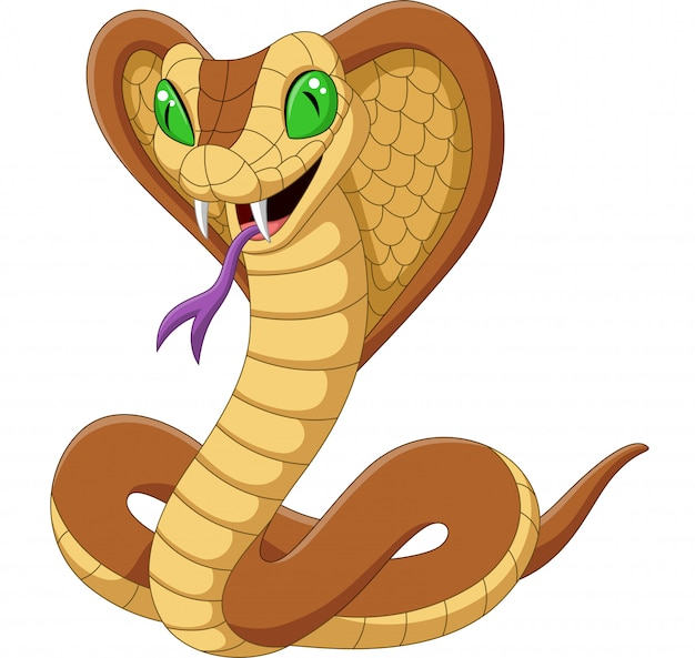 Cartoon king cobra snake isolated