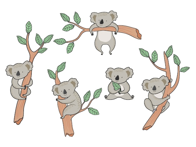 Cartoon koala bears set.