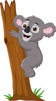 Cartoon koala climbing tree branch