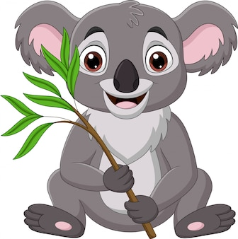 Cartoon koala holding a branch of eucalyptus tree
