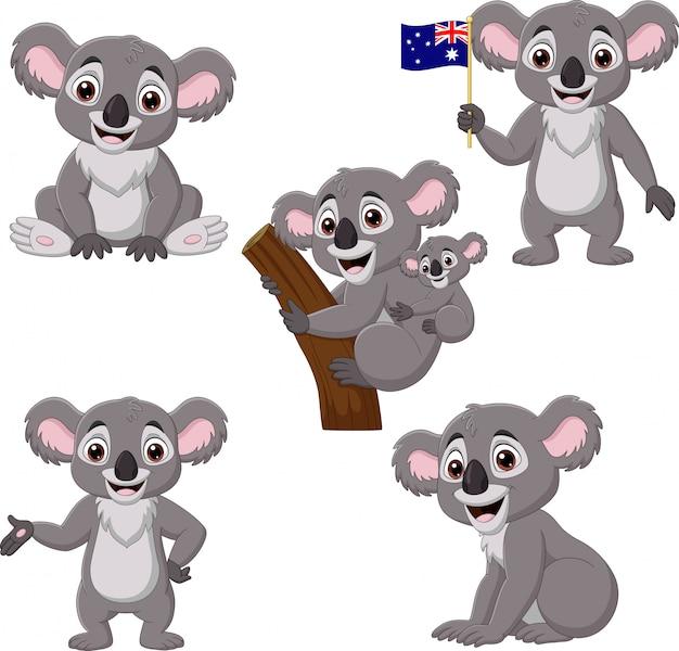 Cartoon koalas collection set