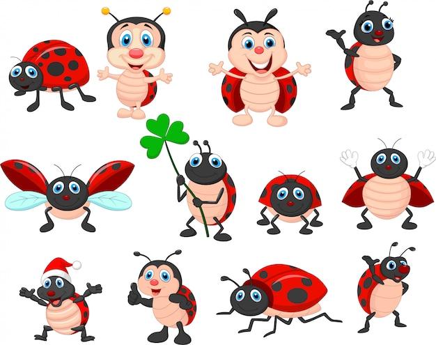 Cartoon ladybug collection set