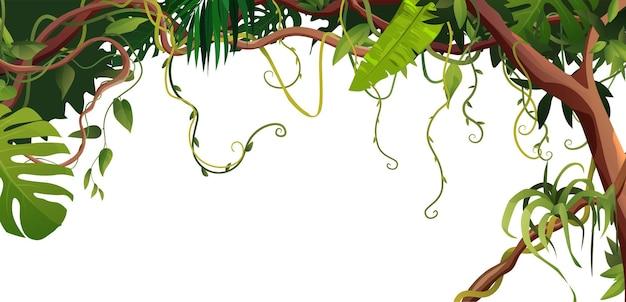 흰색 배경에 만화 덩굴 또는 포도 나무 와인딩 가지