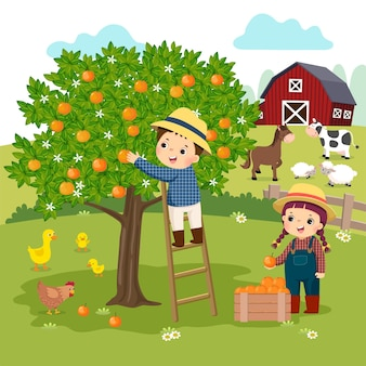 Cartoon of little boy and little girl picking oranges in the farm