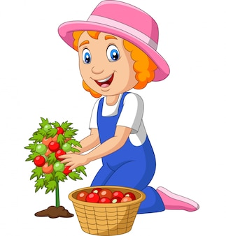 Cartoon little girl harvesting tomatoes