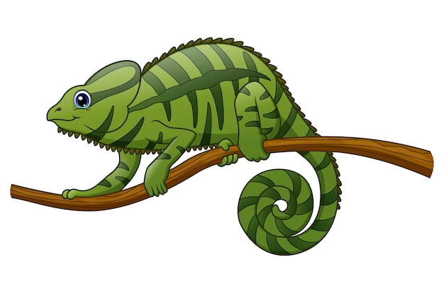 Cartoon mascot chameleon