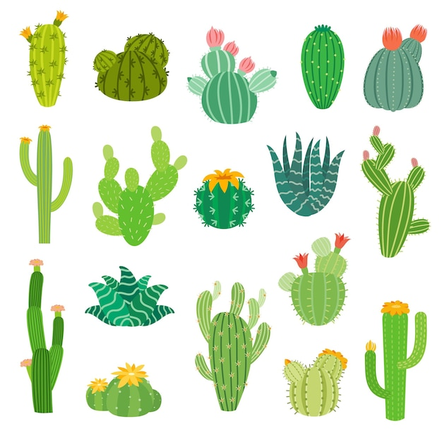 Cartoon mexican or peruvian desert cactus succulents with flowers, vector isolated icons. summer cacti plants of aloe vera, agave and opuntia with blossom flowers, mexico and peru pricky plants