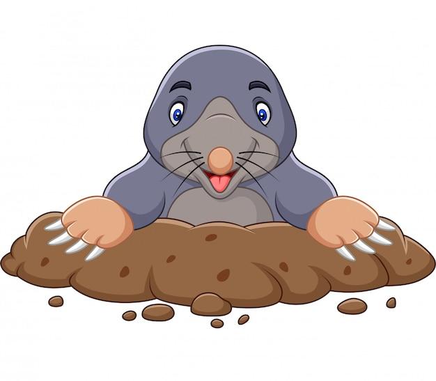 Cartoon mole come out of the hole