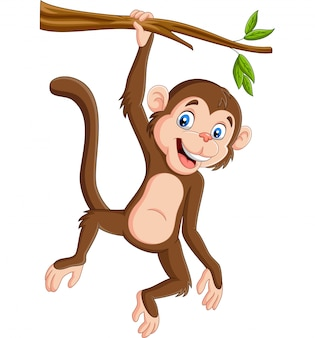 Cartoon monkey hanging in tree branch