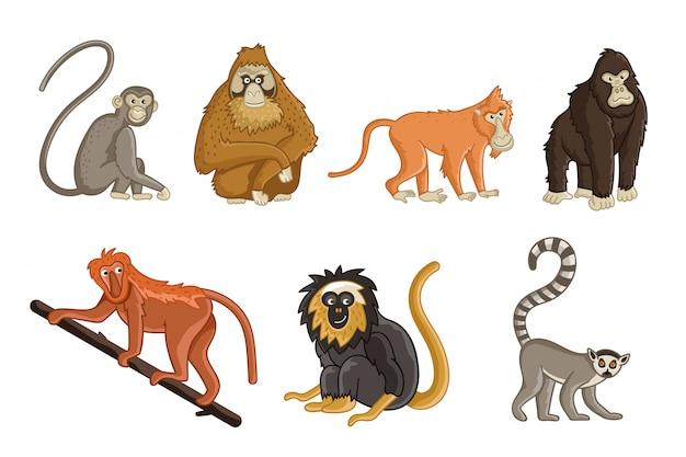 漫画のサル。野生動物と動物園の動物
