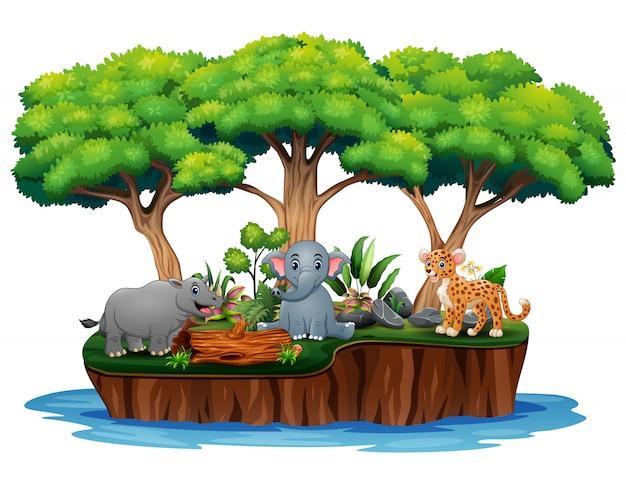 Cartoon nature island with wild animals