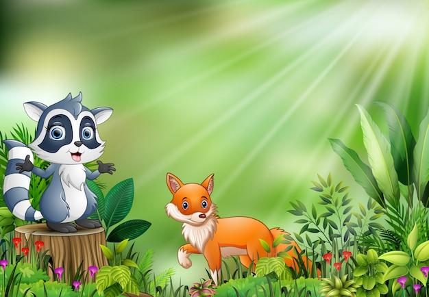 Мультфильм сцены природы с енотом, стоящим на пеньке и лисице