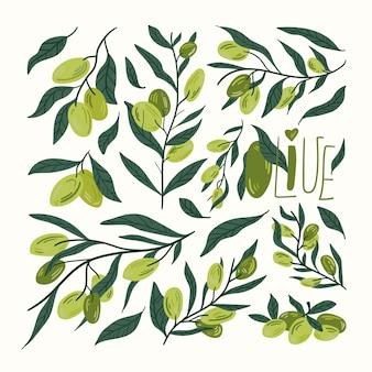Набор элементов мультфильма оливкового масла