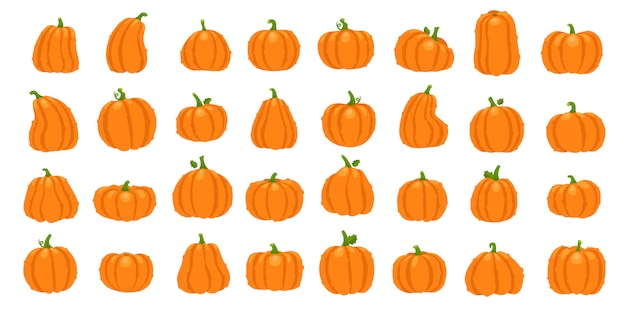 Cartoon orange pumpkin set