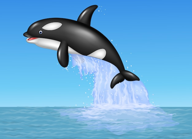 Cartoon orca jumping on the blue ocean background