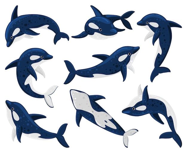 Мультяшные косатки, морской хищник-убийца. касатка морского существа, косатки подводной фауны изолировали набор иллюстраций вектора. морские млекопитающие косатки